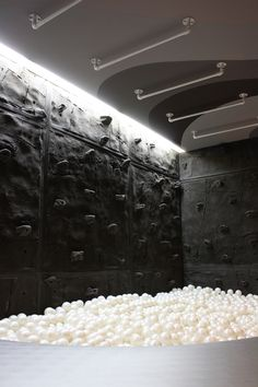 Climbing wall with a ball pit and overhead monkey bars! Superior Rock Home Climbing Wall 1