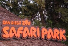 Tips for visiting the San Diego Safari Park Zoo