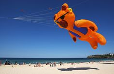 A kite flies in the sky at Bondi's Festival Of The Winds at Bondi Beach in Sydney, Australia. It is the largest kite-flying event in Australia, attracting locals and internationals alike and is run in conjunction with the Australian Kite Flyers Society.