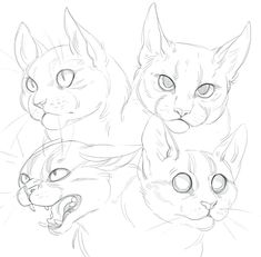 Deviantart cat doodle, how to draw cats, cat drawing tutorial, drawing tu. Animal Sketches, Animal Drawings, Art Drawings, Drawing Animals, Cat Reference, Art Reference Poses, Design Reference, Drawing Reference, Cat Sketch