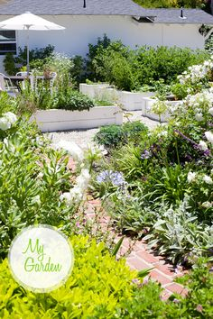 love the raised beds