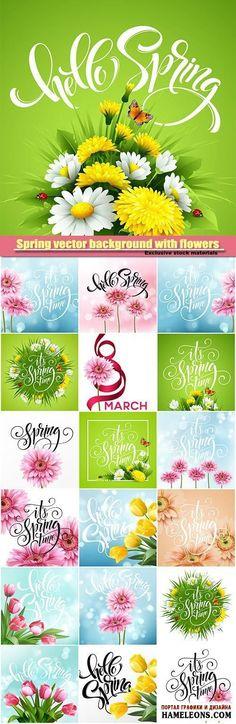Фоны для открыток к 8 Марта с весенними цветами: герберы, тюльпаны - векторный клипарт   Spring vector background with flowers, tulip flower and gerbera