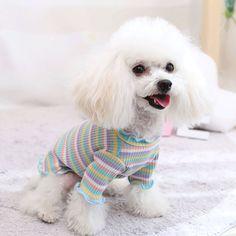Roseonmyhand Pet Dog Clothes Puppy Vest T-shirt Shirt Cute Rainbow Pajamas Cat Winter