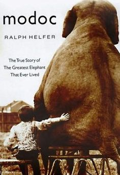 Books: Modoc: The True Story of the Greatest Elephant That Ever Lived (Hardcover) by Ralph Helfer Beautiful Stories, Great Stories, True Stories, Short Stories, This Is A Book, The Book, Books To Read, My Books, Story Books