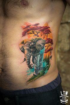 elephant by jon pall