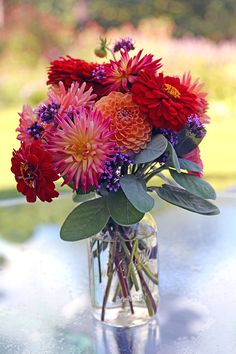 Zinnias and Dahlias in jars.