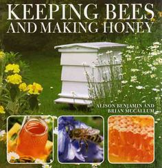 Keeping Bees and Making Honey. Whether you live in an apartment with just a small balcony or you have a farm, this book will teach you how to get started with honeybees.  #bees