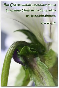 Romans+5:8