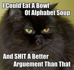 i could eat a bowl of alphabet soup and shit a better argument than that