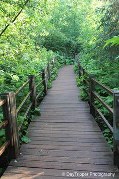 Boardwalk at Gooesberry Falls