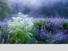 The Blue Garden @ Narborough Hall, Norfolk, England, designed by Joanne Merrison / on TTL Design