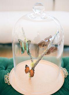 Cloche with Butterflies  #diy #crafts