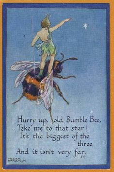 """Hurry up, old Bumble Bee, Take me to that star! It's the biggest of the three, and it isn't very far."" (Hester MARGETSON - Fairy / Pixie riding on Bumble Bee) I Love Bees, Pomes, Vintage Bee, Bee Art, Bee Happy, Save The Bees, Bees Knees, Fairy Art, Bee Keeping"