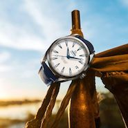 Watchmaker ecommerce lags despite high-price fears being dismissed: L2