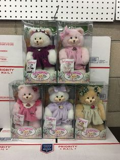 Fisher Price Briarberry Collection Lot of 5 Bears Doll in Original Boxes..1990s