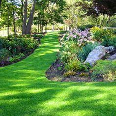 Garden with grass path
