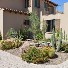 Texas Land Scapes Design Ideas, Pictures, Remodel and Decor