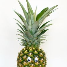 Anna @annasfoto_ Dies das Ananas))...Instagram photo | Websta (Webstagram)