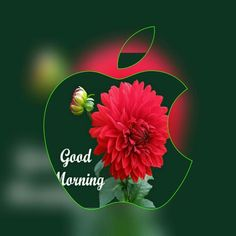 Wishes For Good Morning Images Good Morning Coffee Images, Good Morning Images Download, Good Morning Picture, Good Morning Good Night, Morning Pictures, Good Morning Wishes, Good Morning Clips, Good Morning Texts, Good Morning Flowers
