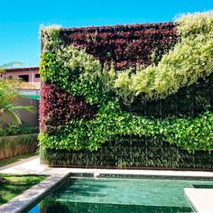 Angles, Vertikal Garden, Garden Screening, Green Trees, Tree Wall, Herb Garden, Rooftop, Garden Landscaping, Terrace