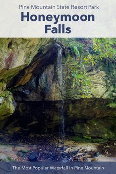 Daniel Boone National Forest, Pine Mountain, Trail Guide, Beaver Creek, Mountain States, State Forest, Roadside Attractions, Autumn Trees, Hiking Trails