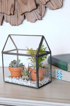 Glass House Terrarium Garden - The Inspired Room blog