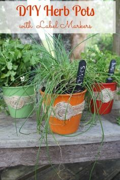 DIY Herb Pots with Chalkboard Plant Markers