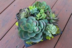 "Aloha4649 on Etsy - Artificial Succulent Arrangement in a Black Decorative Box.  8"" sq. x 6"" h.  $40.  Other sizes/styles avail."