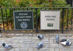 """""""Merci de ne pas nourrir les oiseaux.. nourrissez les gens"""""""