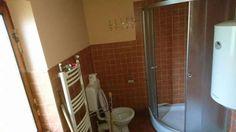 Vand Casa de vacanta + bazine piscicole Valea Inzelului - imagine 8