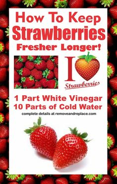 Do you love strawberries but hate that they go bad so darn fast in your refrigerator? Here is a great kitchen tip from an expert in keeping strawberries fresh. Some of the most amazing Strawberries are now at the Farmer's Market lately and here is the best way to keep your strawberries fresh if you …