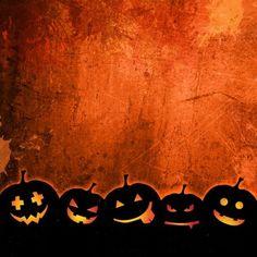 Orange grunge background for halloween with pumpkins de halloween memes Halloween Meme, Photo Halloween, Happy Halloween Quotes, Halloween Icons, Halloween Clipart, Halloween Pictures, Spirit Halloween, Spooky Halloween, Halloween Pumpkins
