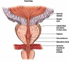 احسن دكتور لعلاج تضخم البروستاتا الحميد ,افضل دكتور لعلاج تضخم البروستاتا الحميد,اشطر دكتور لعلاج تضخم البروستاتا الحميد   http://radiology-interventional.com/3علاج-تضخم-البروستاتا-الحميد/ #Prostateproblemsinmen