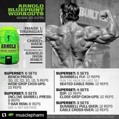 Arnold schwarzenegger blueprint workout day 6 gym workouts arnold schwarzenegger blueprint workout day 6 gym workouts pinterest arnold schwarzenegger malvernweather Choice Image