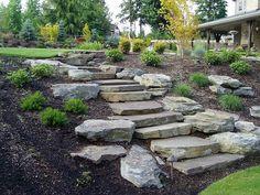 A natural garden