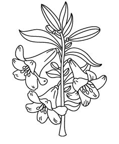 Find This Pin And More On Coloring Book By Kathia Wright