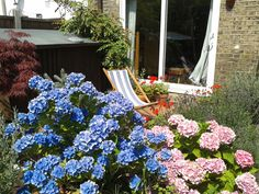 English garden tranquility
