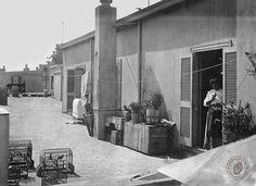 Azotea de la Casa Rosada, 1905.