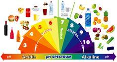 Como alkalinizar nuestro cuerpo con una dieta saludable