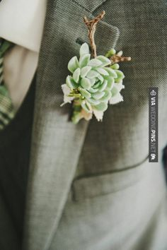 Neato - perfect | CHECK OUT MORE GREAT GREEN WEDDING IDEAS AT WEDDINGPINS.NET | #weddings #greenwedding #green #thecolorgreen #events #forweddings #ilovegreen #emerald #spring #bright #pure #love #romance