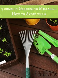 7 Common Garden Mistakes and How to Avoid Them