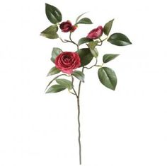 This artificial Camellia Stem /Spray with dark pink flowers is as realistic as the real thing. It measures from top to bottom bare stem, leaves and flowers). Camellia, Artificial Flowers, Pink Flowers, Leaves, Dark, Plants, Top, Fake Flowers, Plant