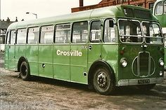 This is a green bus, Millie!