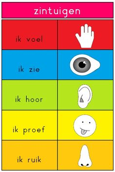 teacher Rita pcbs' t Mozaïek :: jufritapcbsmozaie . - Back to School Five Senses Preschool, My Five Senses, Learn Dutch, Learn English, Montessori Activities, Fun Activities For Kids, Pre School, Back To School, Dutch Phrases