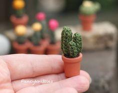 Amigurumi Cactus Tejido A Crochet Regalo Original : Crochet cactus garden and holding crochet