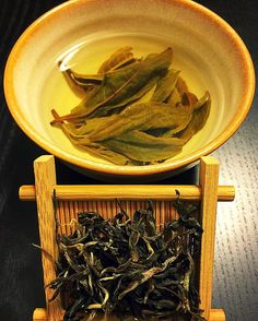 Forest Song 2016 Sheng Puerh Maocha from #globalteahut. Infused in 190f the sweetness of this leaf revealed itself.  Dry leaf is of dark cocoa.  Enjoyed the moment it presented don't force yourself to understand simplesubtletea.com . . #cupoftea #teatime #teatraining #teaeducation #tea #teaaddict #teafriends #healthy #healthyliving #teajournal #teaaddict #healthylifestyle #myteabox #calm #life #foodie #letsgosomewhere #discovering #food #yoga #wellness #healthyyou #healthymind #ilovetea…