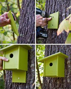Carpenter Bee Trap, Modern Birdhouses, Birdhouse Designs, Diy Birdhouse, Plastic Milk, Bird Houses Diy, Building Bird Houses, Homemade Bird Houses, Bird House Kits