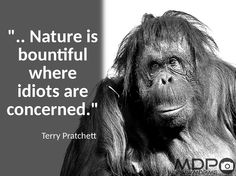 .. Nature is bountiful where idiots are concerned. #ook #quote #QuotesOfTheDay