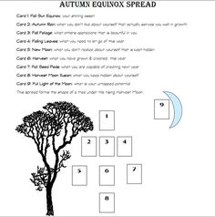 Autumn Equinox Tarot Spread - Donnaleigh's Blog