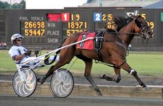 The Hambletonian Society/Breeders Crown Poll gives kids the opportunity to learn about pacers and trotters and how to interpret a table showing the statistics for the year's top horses.